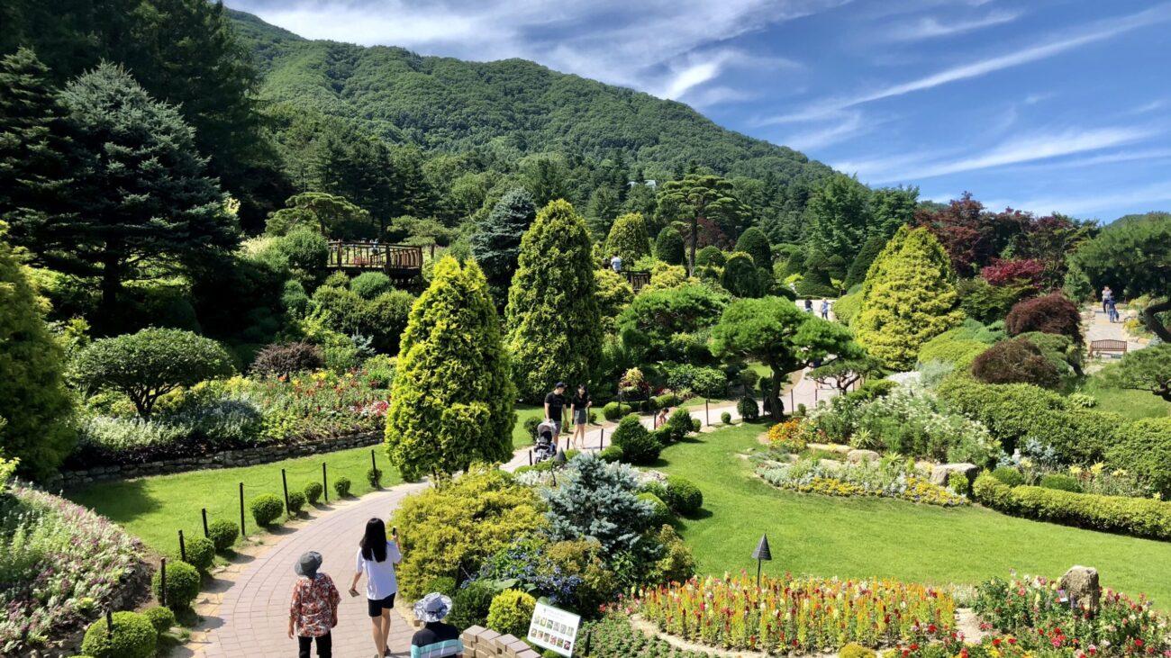 Garden of Morning Calm in Summer