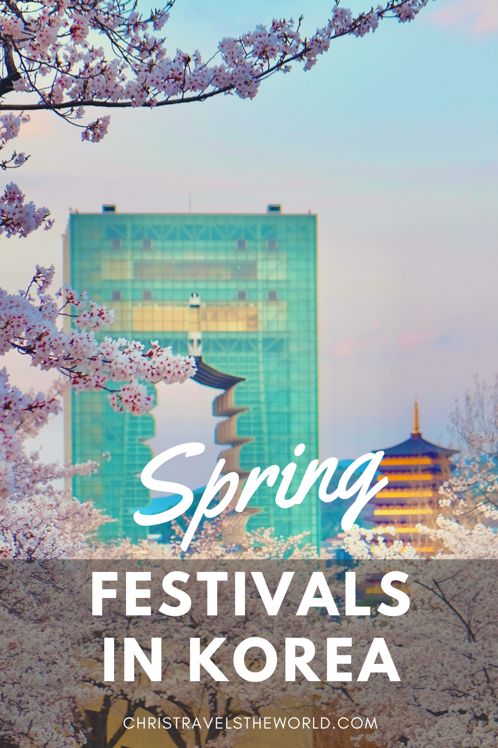 Very compete list of spring festivals in South Korea. Detailed information on festival activities, what to expect, how much does it cost and how to get there.