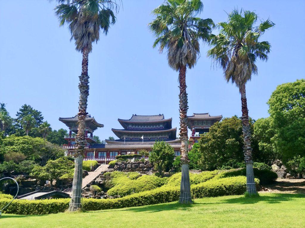 Yakcheonsa Temple Palms