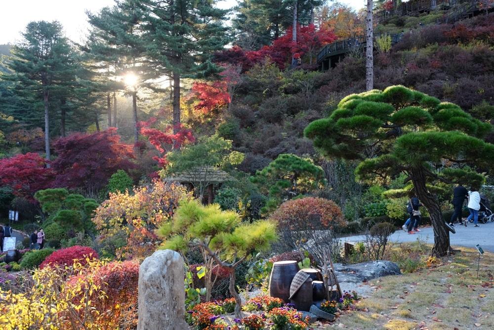 Hometown Garden