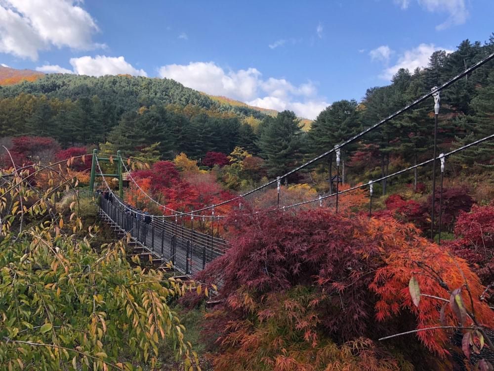 Suspension Bridge at Garden of Morning Calm