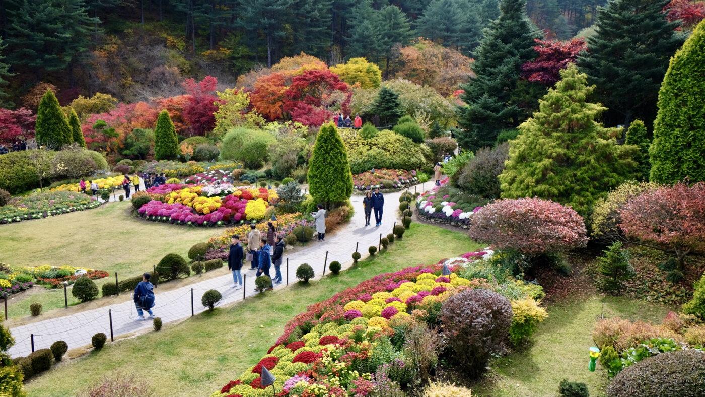 Garden of Morning Calm in Fall