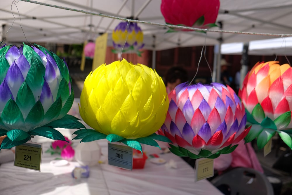 Build your own paper lotus lantern